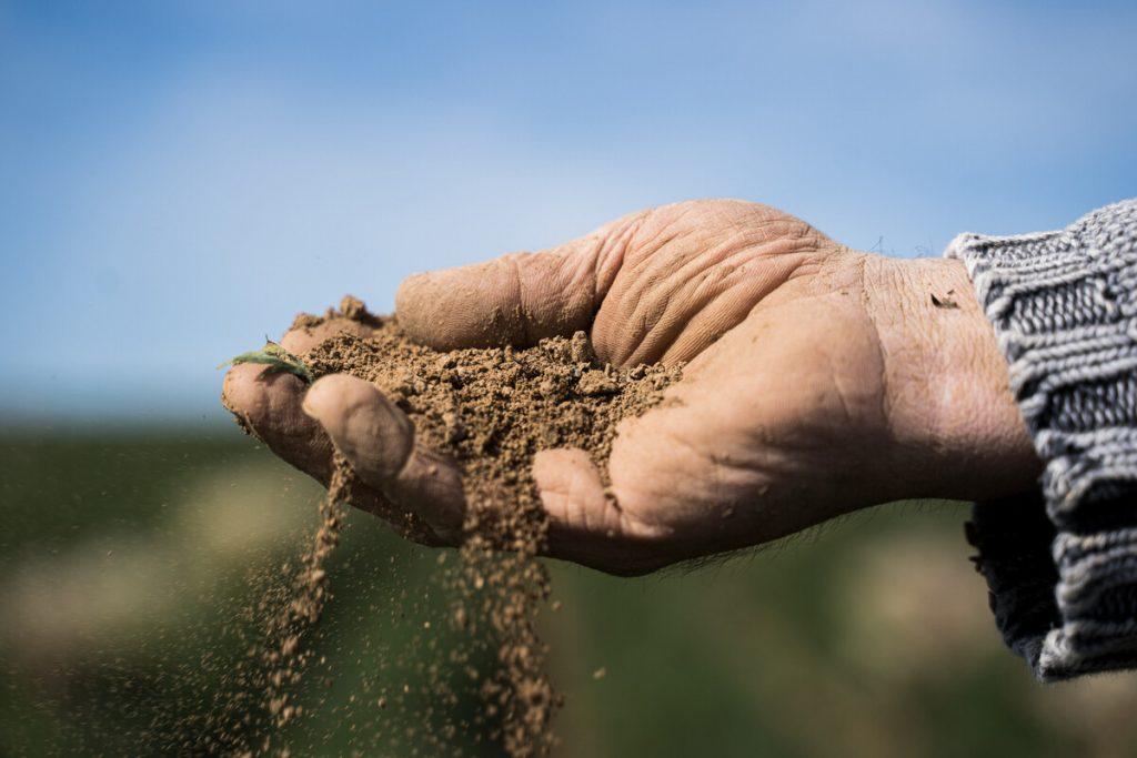 Demeter quality soil fertility