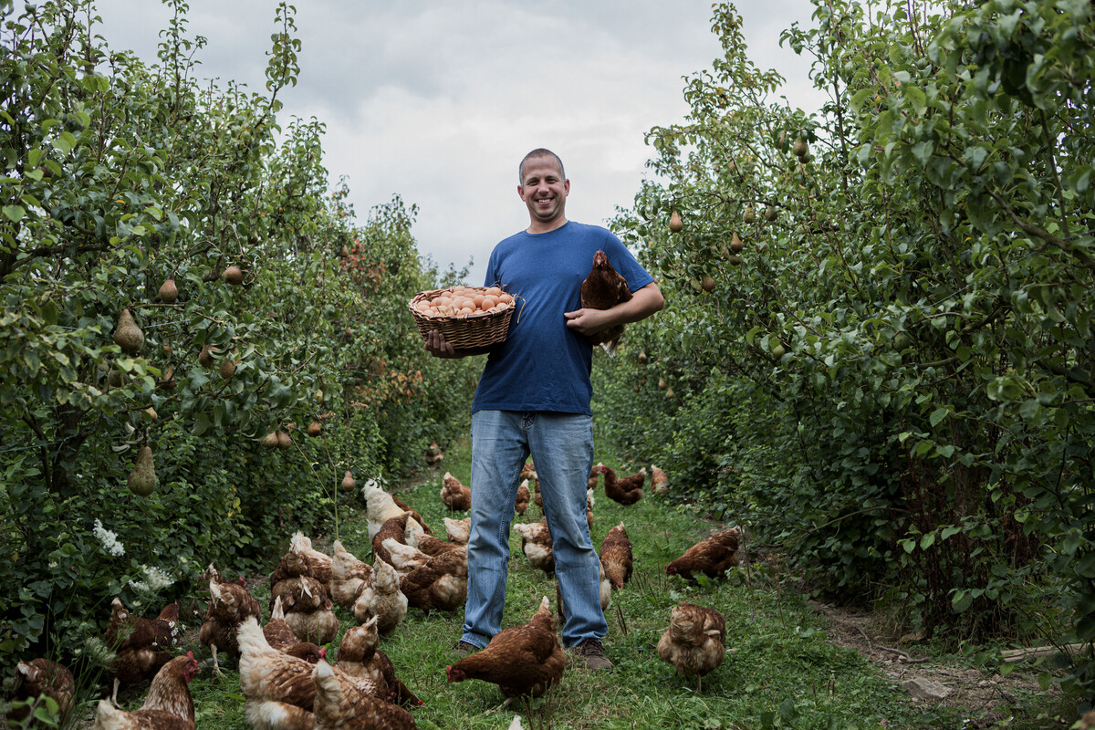 Demeter poultry Daniel Hoeberichts from Orchard Eggs in the UK